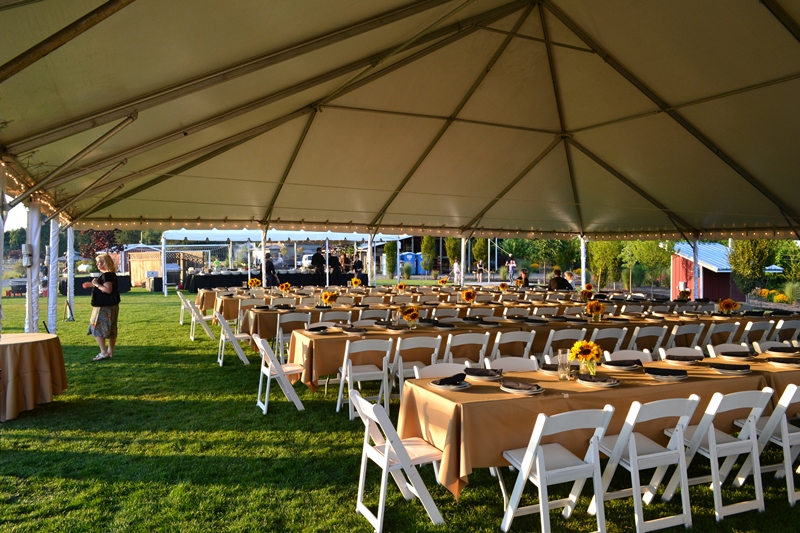 Outdoor Canopy Event